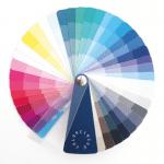 kleurenanalyse uitgebreid compact